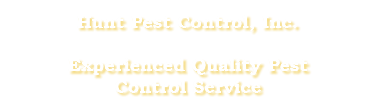 Experienced Quality Pest Control Services